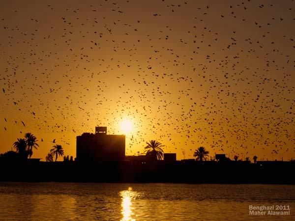 بنغازي وقت الغروب ـ ليبيا