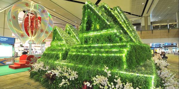 بالصور: معالم عالمية من النباتات في مطار سنغافورة