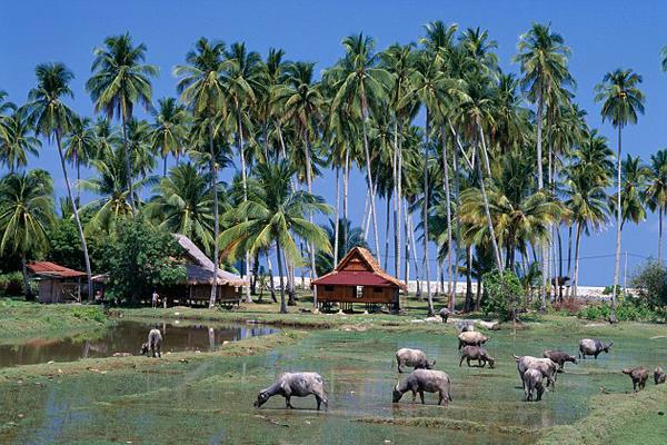 سحر خاص للطبيعة في جزر الأرخبيل