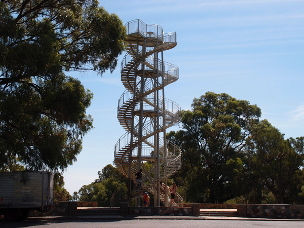 برج الـ DNA أعلى نقطة في متنزه الملك