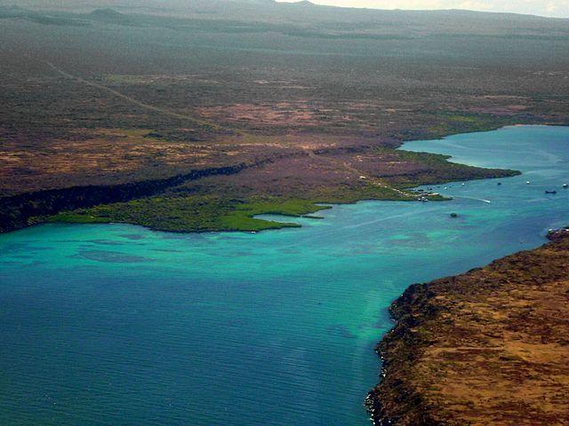 جزر غالاباغوس.. مهد نظرية التطور