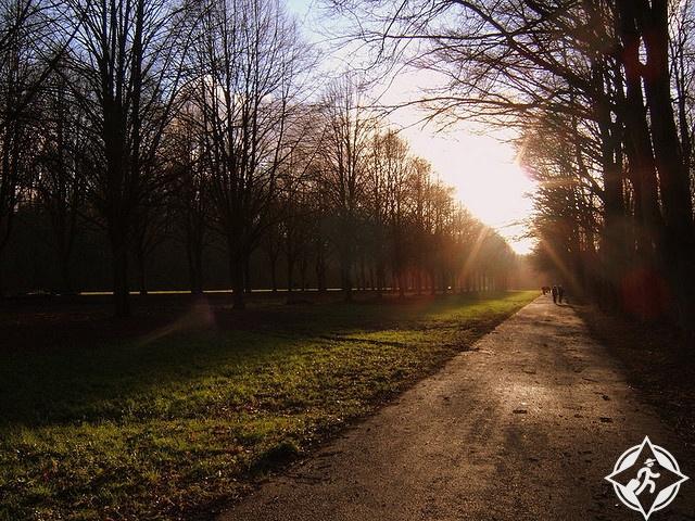 غابة أمستردام