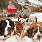 جلسات التصوير مع كلاب زيرمات