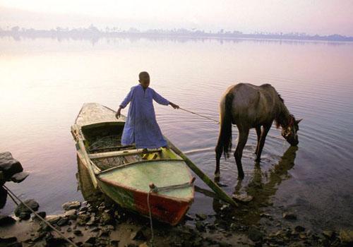 على شاطئ النيل في الصباح