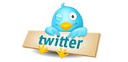 شعار تويتر Twitter bird