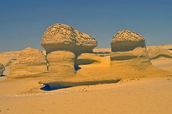 وادي الحيتان، الفيوم ـ مصر