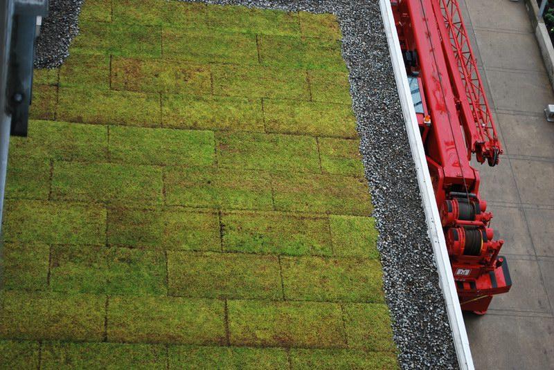 مثال للأسطح المرزوعة داخل قبة مونتريال