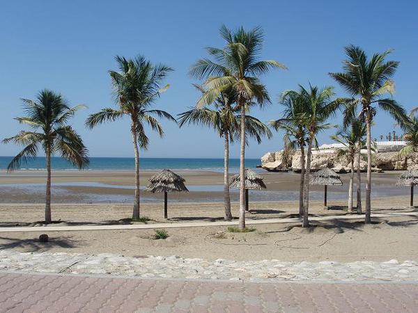 شاطئ القرم.. من الشواطئ المفضلة للسيّاح
