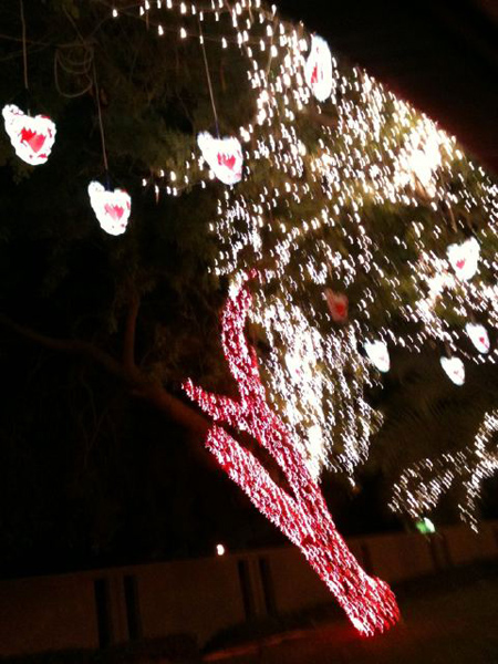 استعداد البحرين لاسنقبال العيد الوطني