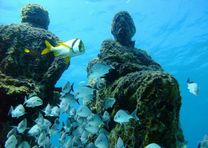 الأسماك والأعشاب تضفي جمالاً على قطع المتحف