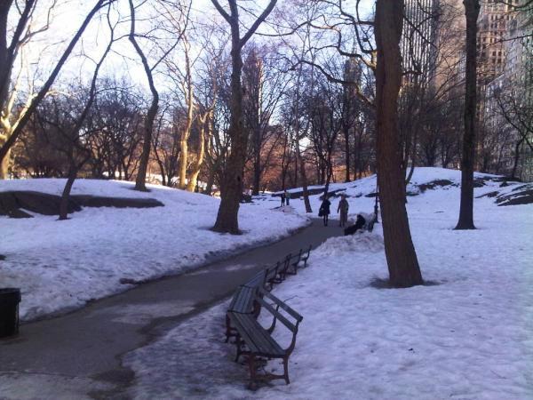 حديقة سنترال بارك ، مانهاتن ـ نيويورك