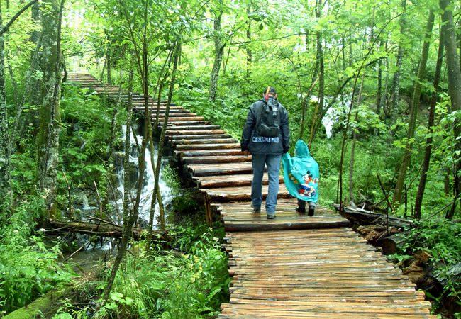 جسور خشبية توفر فرصة التجوال داخل البحيرة
