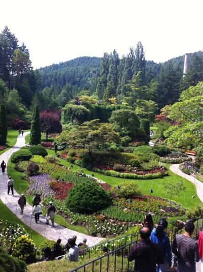 حديقة the butchart gardens في جزيرة فيكتوريا، كندا