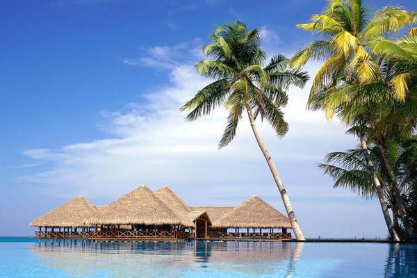 من جزر المالديف