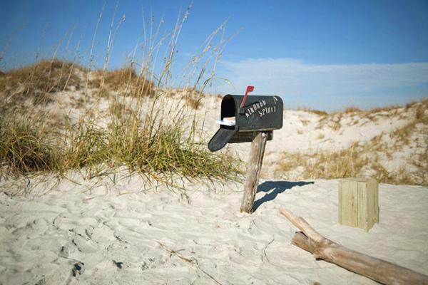 شاطئ جزيرة الطيور، كارولينا الشمالية Bird Island Beach