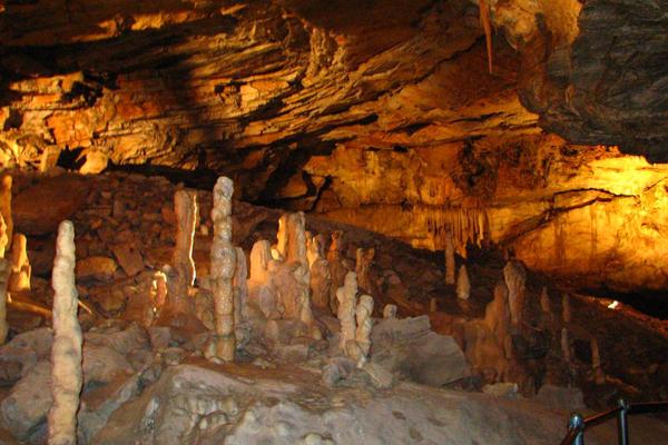 كهف بوستوينا Postojna Cave