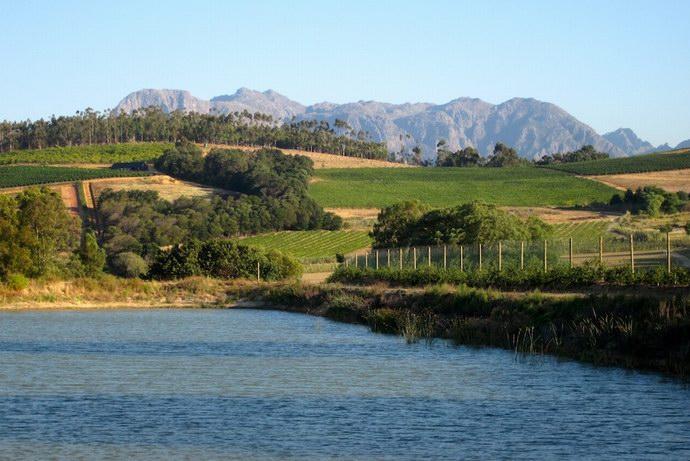 بحيرات عديدة داخل المزرعة
