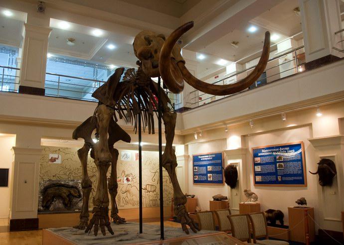 أول متحف أقيم في ساليخارد