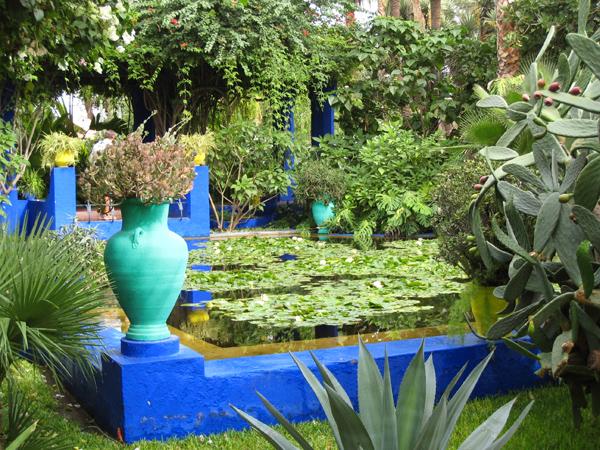 أنواع نادرة من النباتات في حدائق ماجوريل الجميلة