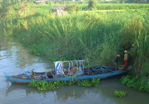 """في دلتا نهر """"ميكونغ"""" تمتد عشرات القرى ومساحات واسعة من الأراضي الخصبة"""