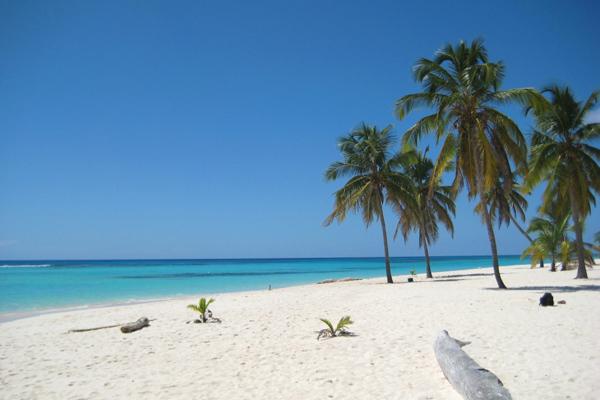 شواطئ الرمل الأبيض النظيفة في بونتا كانا