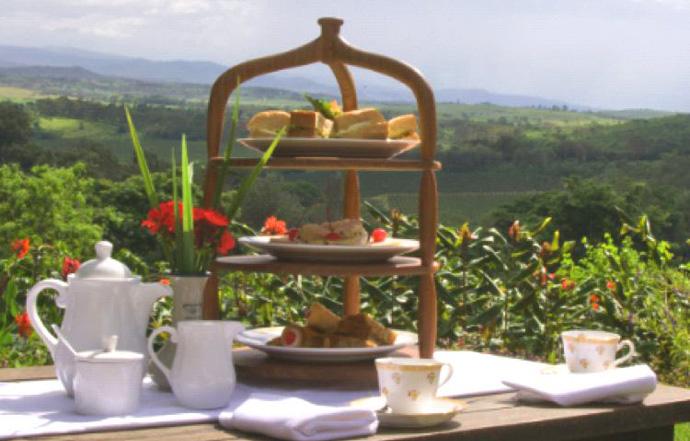 شاي بعد الظهر وسط الطبيعة الهادئة في مزرعة جيبس