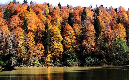 بحيرة قرة غول التركية