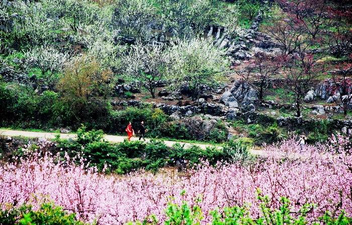 بالصور.. مهرجانات الصين من يناير إلى ديسمبر