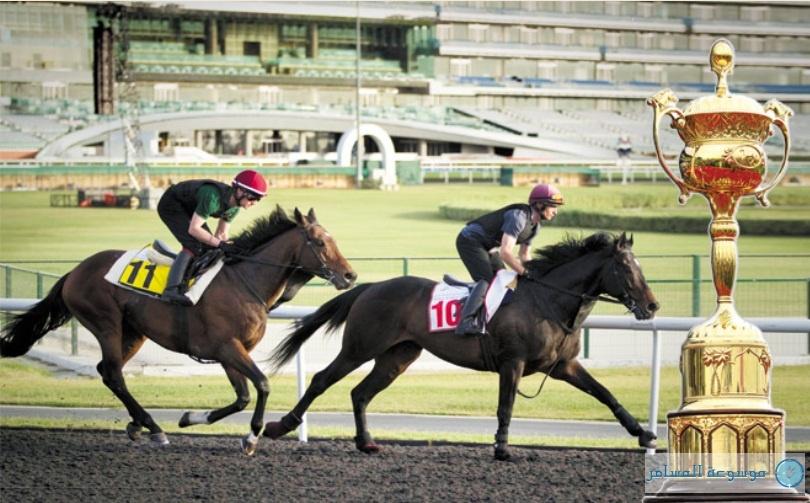 كأس دبي العالمي للخيول