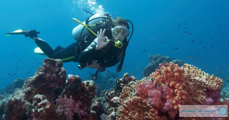 أشهر 6 عادات سياحية في منطقة البحر الكاريبي
