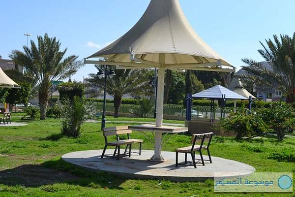 الطائف تستعد لزوار العيد بـ50 حديقة ومتنزَّهاً