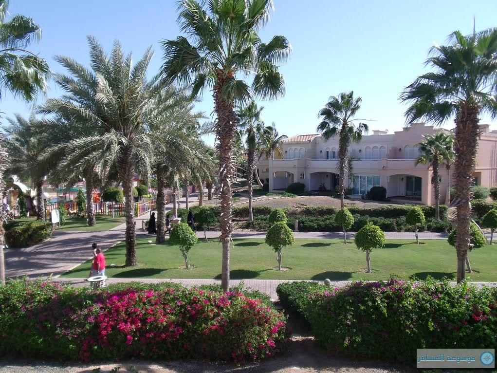 قرية مكارم النخيل