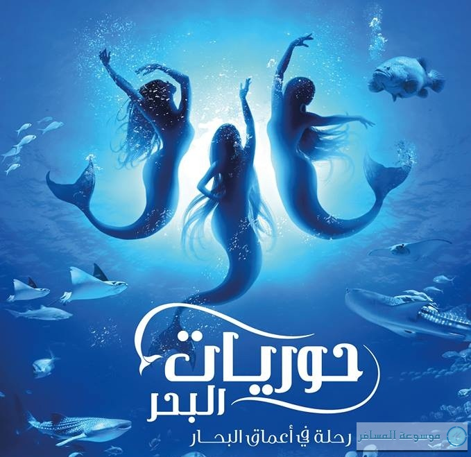 عروض حوريات البحر في دبي أكواريوم