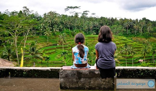 يستمتعون بجميل ما أبدعه الخالق وما يصنعه المزارعون، مدرجات الأرز تيقالالانق