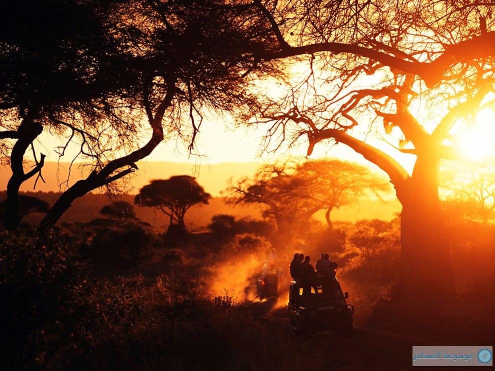 الحديقة الوطنية تنزانيا