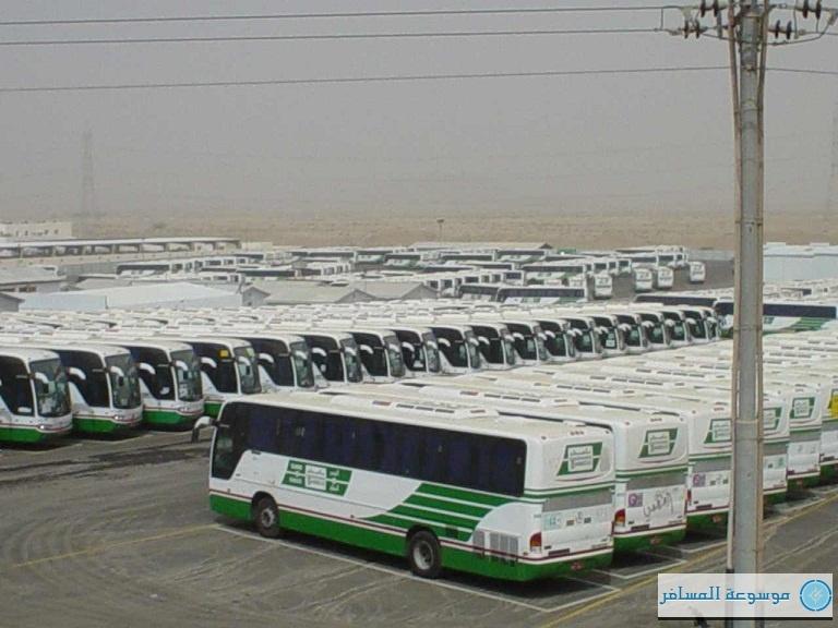 النقل الترددي للحافلات