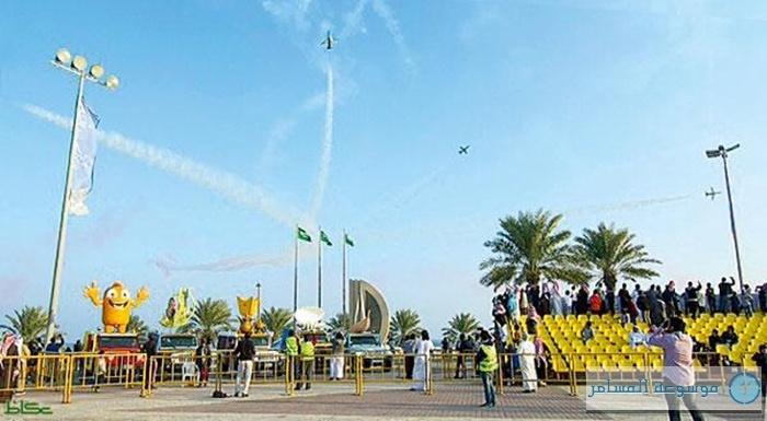saudi-hawks
