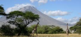تنزانيا : أرض المغامرات البرية المفعمة بالإثارة!
