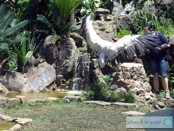 Amazing natural parks in Durban, South Africa