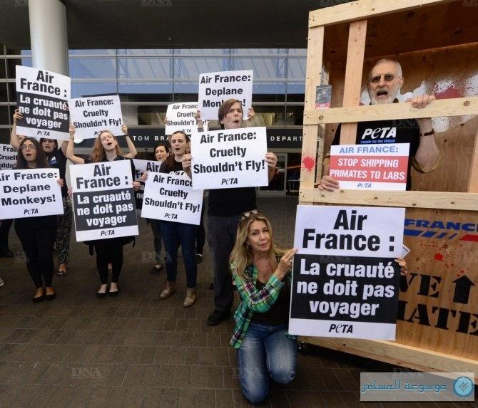 مقاطعة إير فرانس بسبب نقل القردة