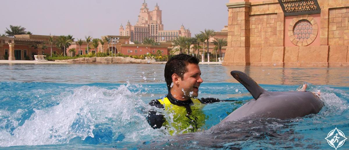 السباحة مع الدلافين في منتجع أتلانتس النخلة
