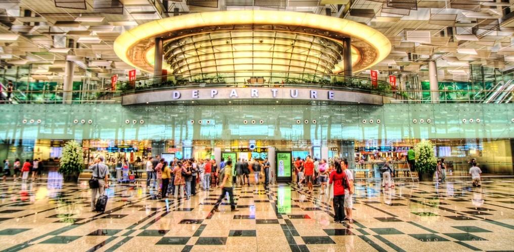 مطار شانغي في سنغافورة ، تريب أدفايزر