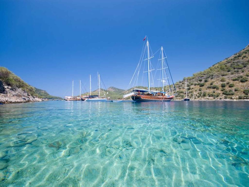 السواحل التركية