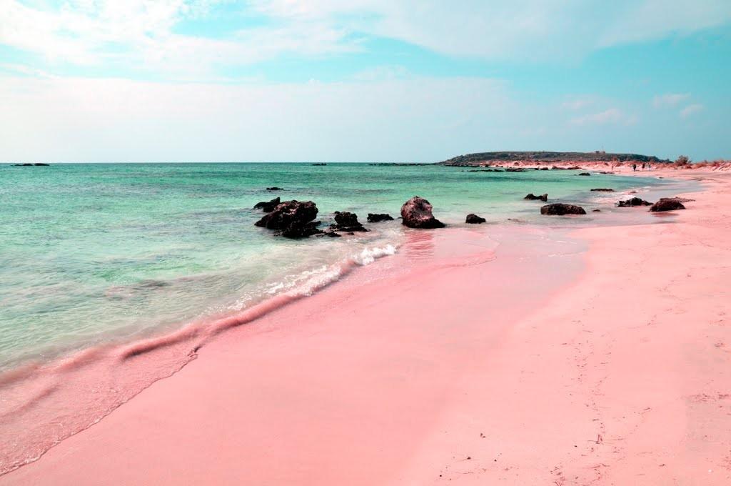 الشاطئ الوردي في جزيرة كومودو