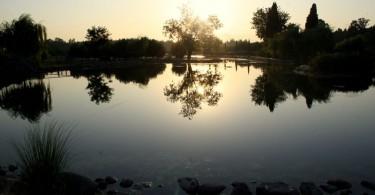 حديقة الحياة الطبيعة