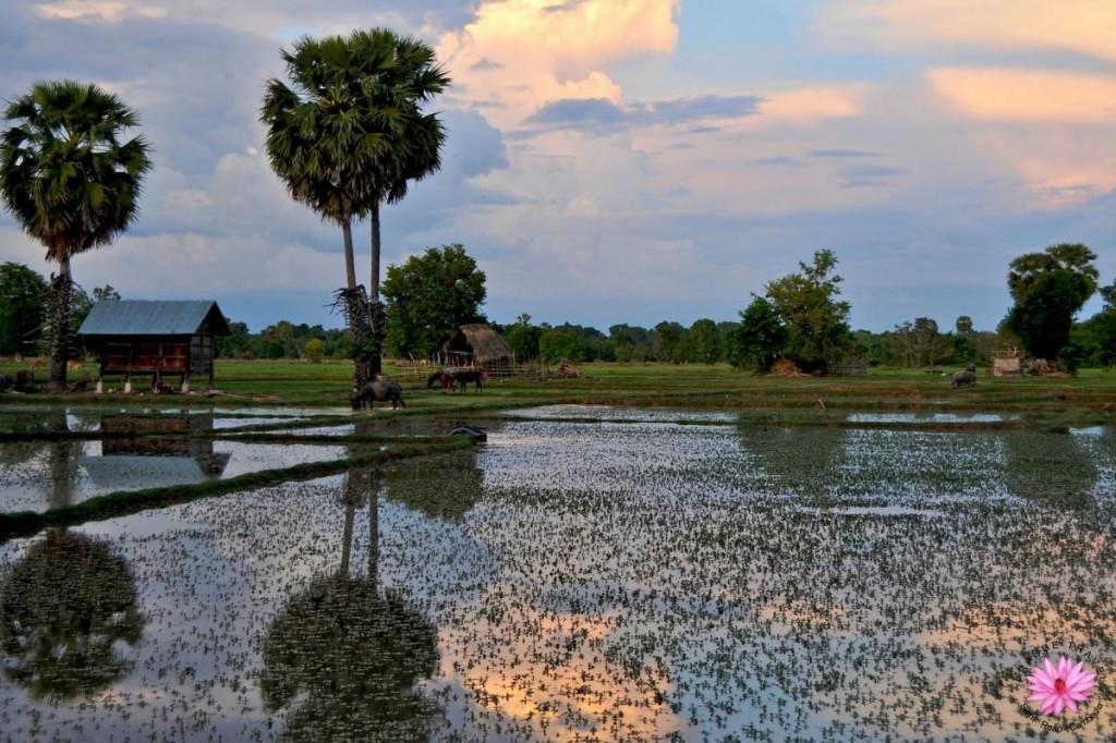 4 آلاف جزيرة في لاوس