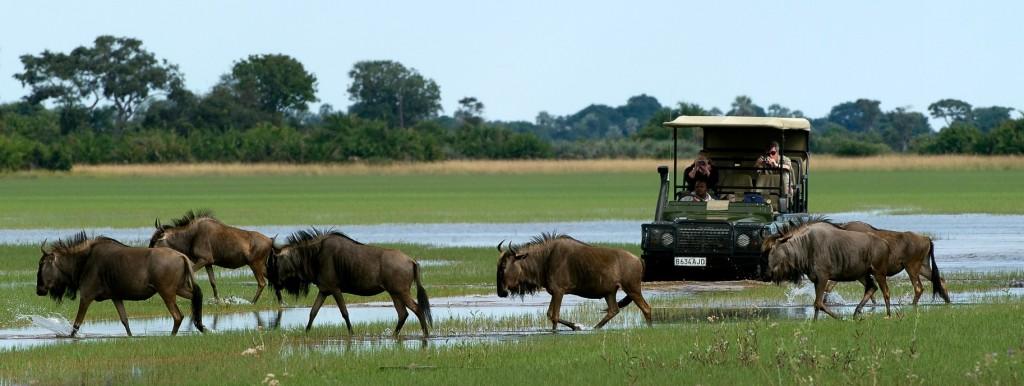 السياحة في بوتسوانا