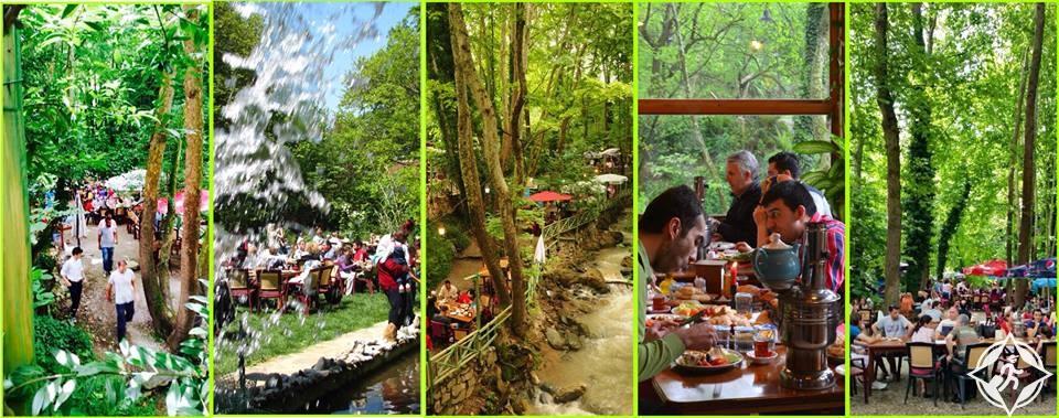 أين تجد أفضل المأكولات بين مطاعم بورصة التركية ؟