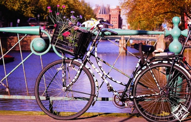الدراجات في هولندا