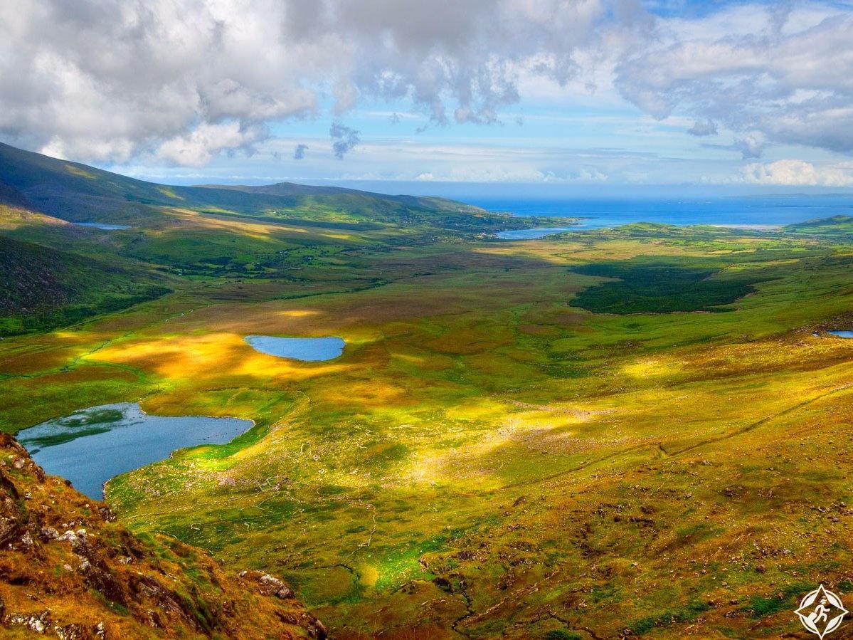 شبه جزيرة الوادي المشجر